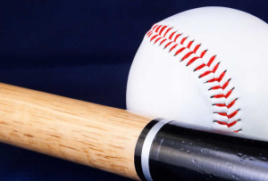 baseball softball bat