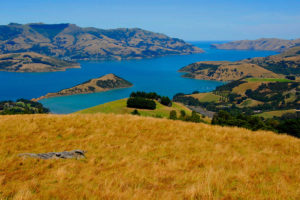 Have a Great Time with New Zealand Holidays